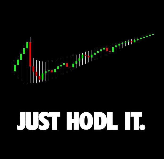 Is it Time to Buy Cryptocurrencies and Join the HODL Gang?